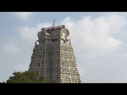 Srirangam Temple trip - Sri Rangapura Vihara