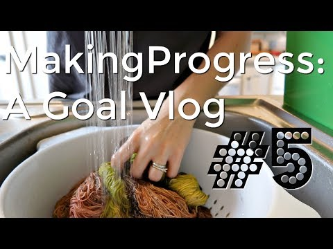 Making Progress:  Yarn Dying Vlog # 5 Reboot