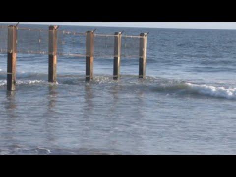 Ormond Beach, enclave silvestre que no se doblega a la contaminación en EEUU