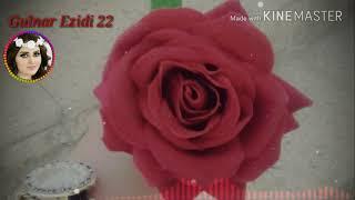 اجمل اغاني كردية / خوشترين ستران كوردي /Kurdish Music