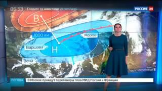 Погода 24: когда в Москве выпадет снег