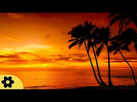Sleep Music, Calm Music for Sleeping, Delta Waves, Insomnia, Relaxing Music, 8 Hour Sleep, �C