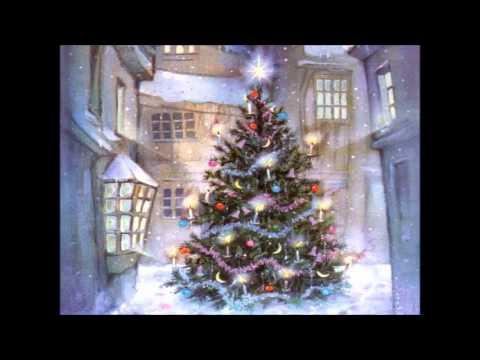 Ara és Nadal. Lexu's.