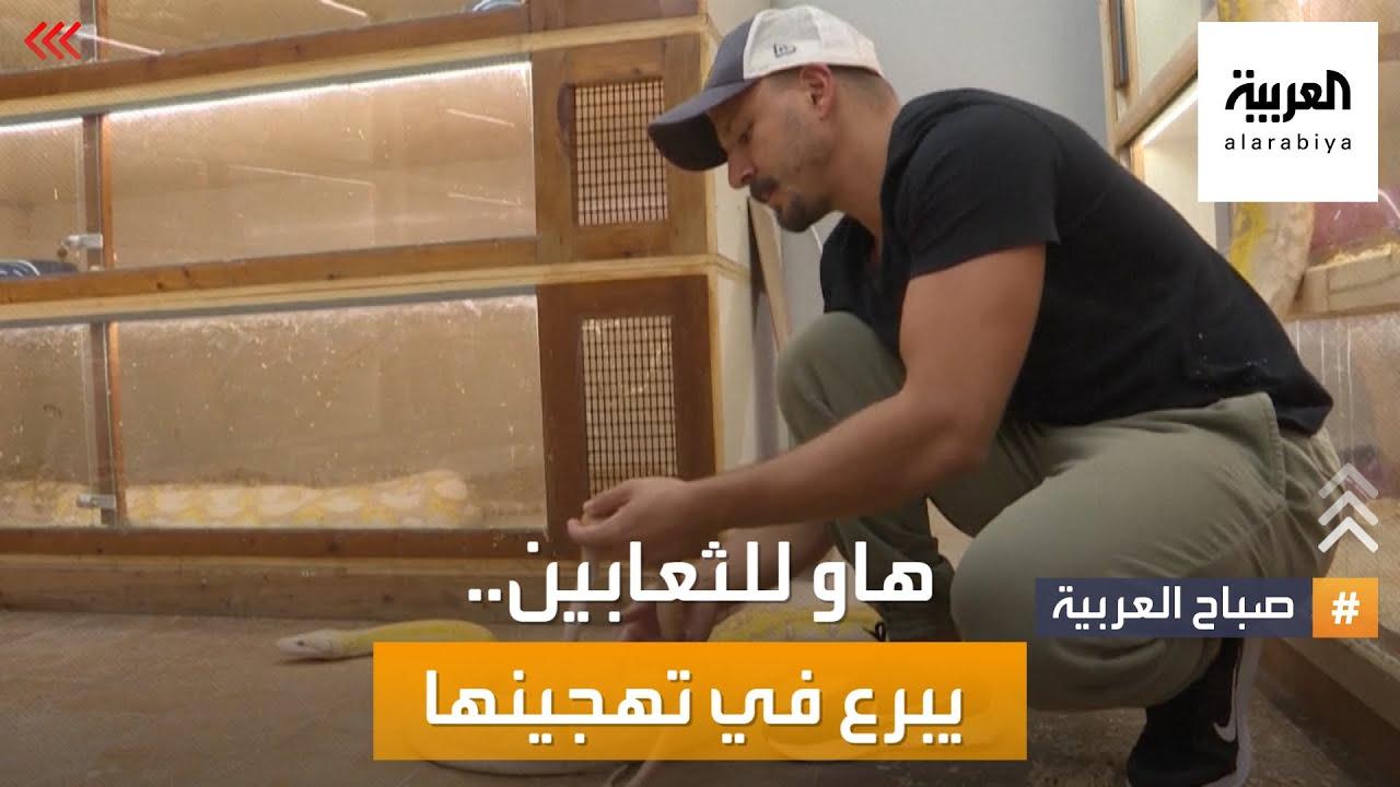 صباح العربية   سعودي هاو للفن يبدع في تهجين الثعابين النادرة