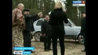 Десятки гектаров молодых сосен в Шиловском районе превратились в горельник