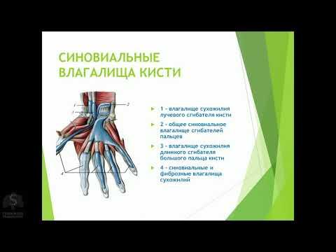 Гнойные заболевания пальцев и кисти