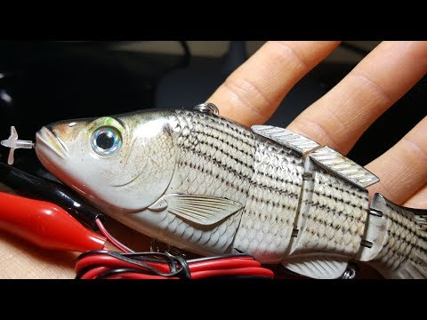 New Fully Motorized Fishing Lure - Beginning Of The End For Live Bait?