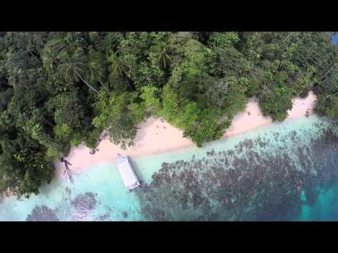 Pig Island - Madang - Papua New Guinea
