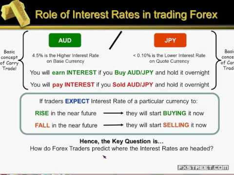 Meherban Faroogh: Interest Rate Expectations