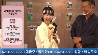 (추석맞이 한정판매) 봉평전통시장 오륜감자&봉메…