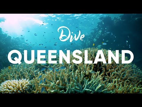 Scuba Diving in Queensland, Australia