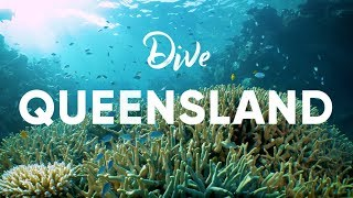 Great Barrier Reef Diving, Queensland