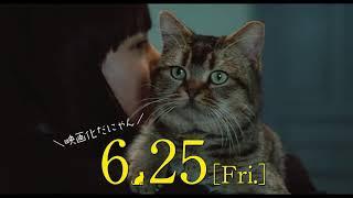 映画『夏への扉 -キミのいる未来へ-』スペシャル映像(猫のピート案内編)