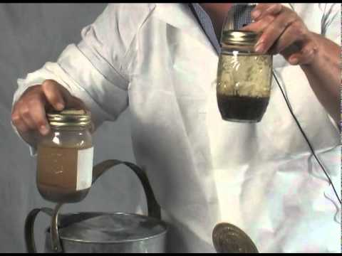 Organic Soils vs. Conventional Soils