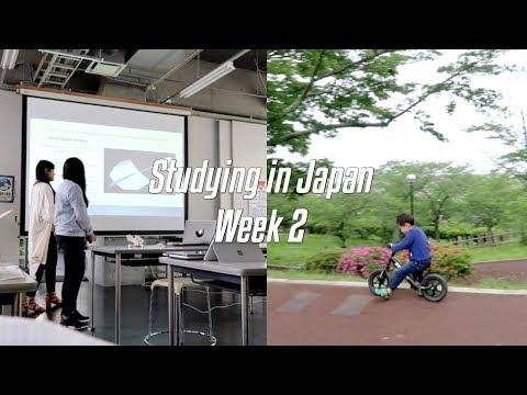 Travel Diary // Japan Week 2