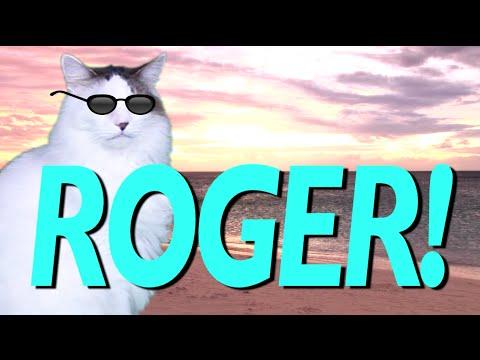 hqdefault happy birthday roger! epic cat happy birthday song youtube