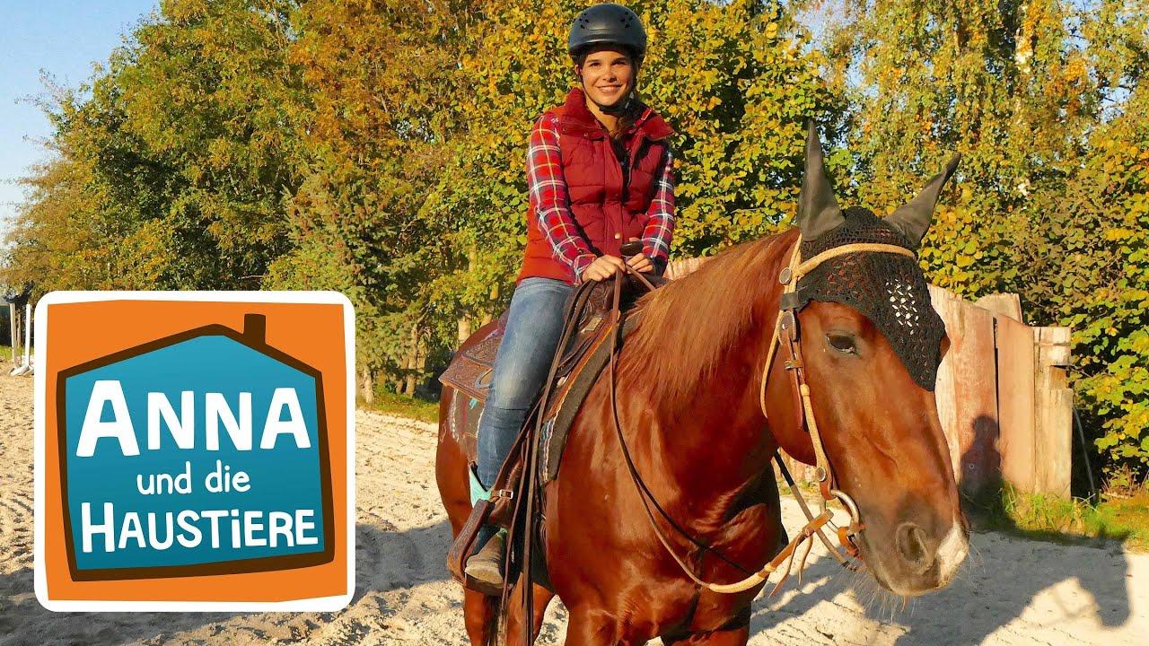 Reiten Wie Ein Cowgirl 4 Information Fur Kinder Anna Und Die Haustiere Spezial Youtube