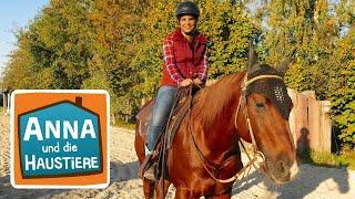 Reiten wie ein Cowgirl #4   Information für Kinder   Anna und die Haustiere  Spezial