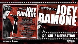 HOMENAJE A JOEY RAMONE. 20 - She