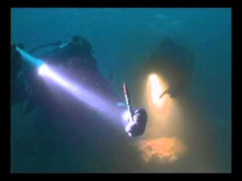 Deep Sea Detective - YMS 304