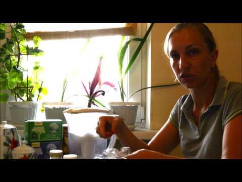 Утка тушеная кусочками рецепт с фото