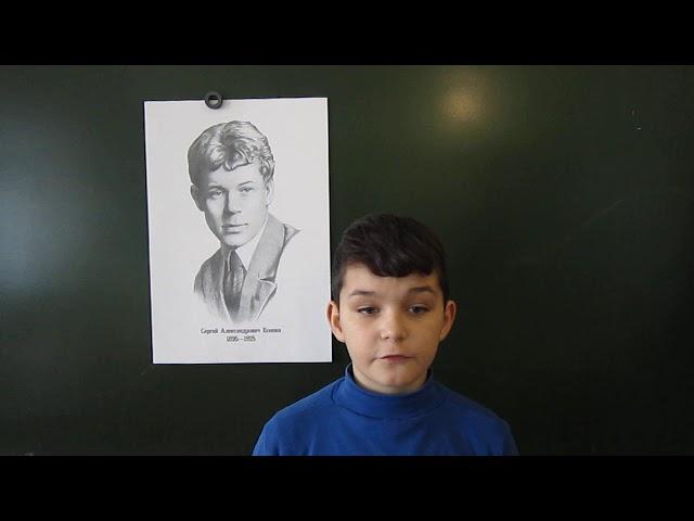 Изображение предпросмотра прочтения – ГамильБикмятов читает произведение «Мои мечты» С.А.Есенина