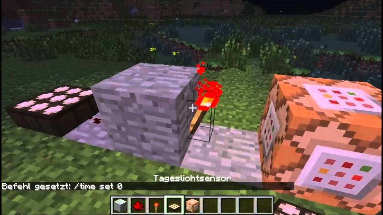 Minecraft Immer Tag