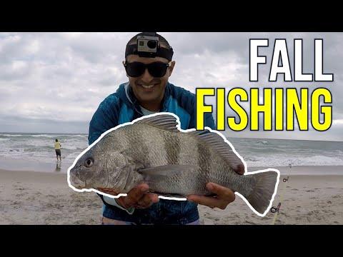 INCREDIBLE North Carolina Fall Surf Fishing