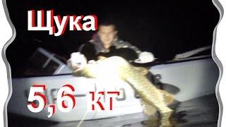 Подводная охота осенью в дельте Днепра