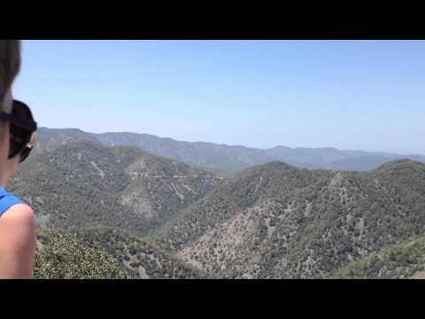 Paphos Forest Trip