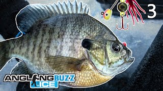 Ice Fishing Panfish - AnglingBuzz ICE