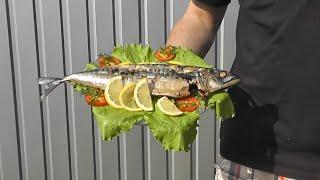 Скумбрия рыба на мангале, горячее копчение на углях и барбекю