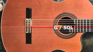 7 strings guitar tuner