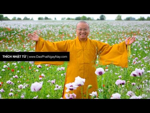 Kinh Duy Ma Cật 10: Kho tàng không cùng tận (03/07/2012) Thích Nhật Từ
