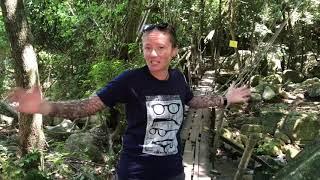 Тайские путешествия Самуи
