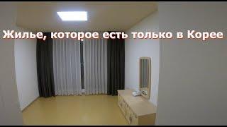 콘도 - жилье, которое есть только в Корее, 한양대 - 답사 [오!한국어, Уроки корейского от Оли]