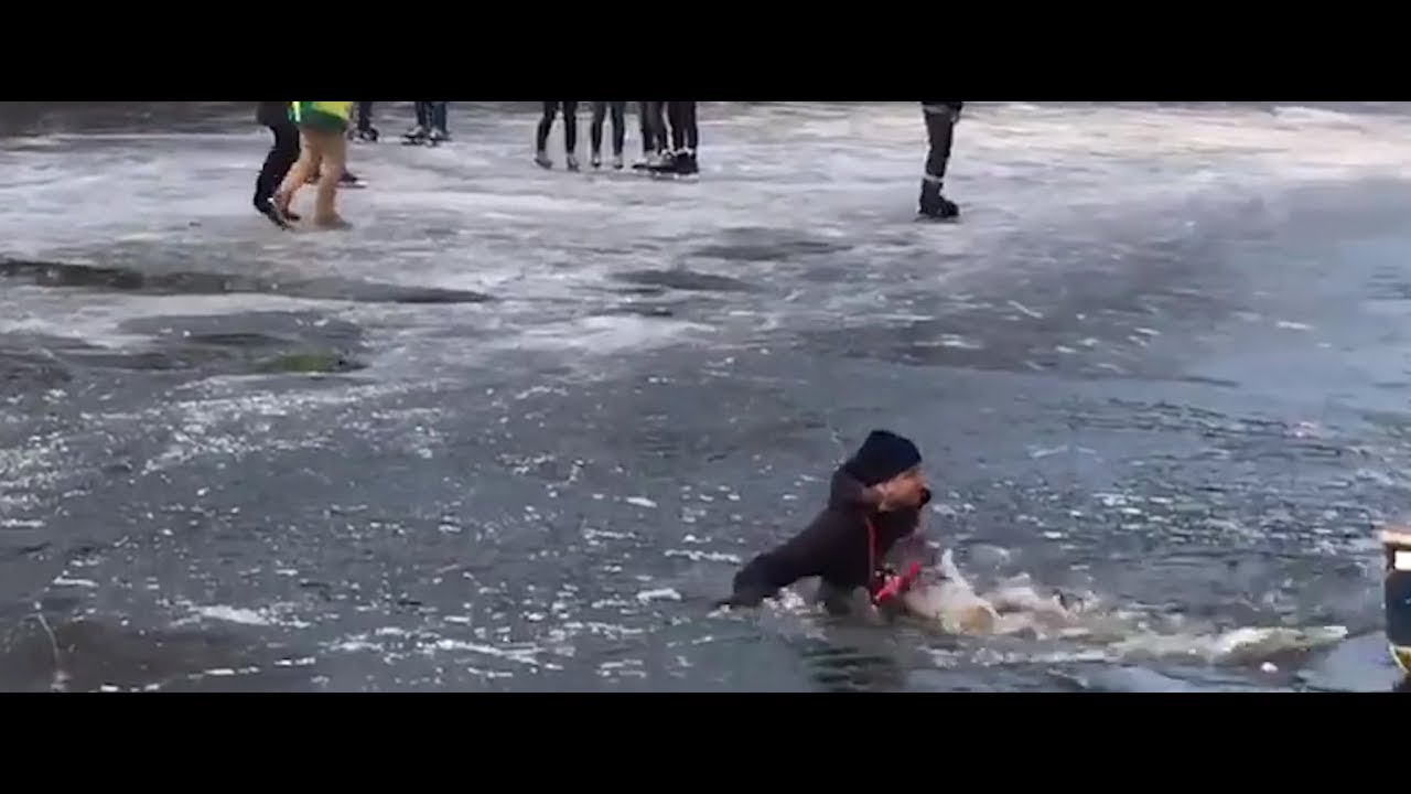 Hysterical reaction to ice skater who falls through ice in Amsterdam -  YouTube