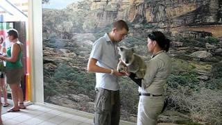 Australia Zoo, Koala foto maken. Lars Mol (2008)