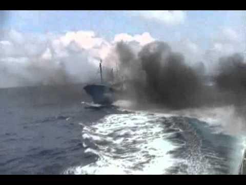 【尖閣中国漁船衝突】映像公開前 民主党・辻元清美「カワハギを獲りに...意図があった訳ではないのでは」大塚耕平「小さい船が大きい船にぶつかってきますかね」