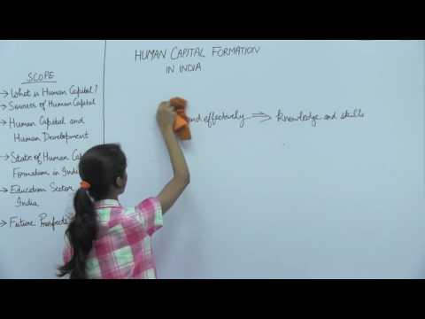 Human Capital Formation in India _ Part1 _ Introduction _ Kavya Singhal