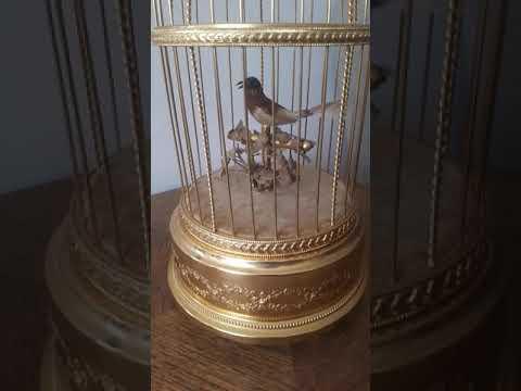 Swiss reuge automated singing bird music box