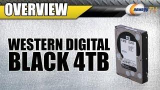 "Newegg TV: Western Digital WD Black 4TB 7200 RPM 3.5"" Internal Hard Drive Overview & Benchmarks"