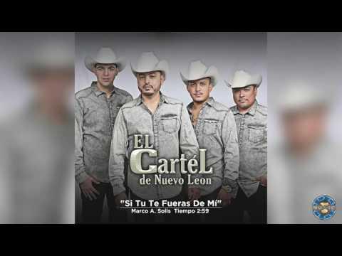 El Cartel de Nuevo León - Si Tu Te Fueras De Mi ( Audio Oficial )