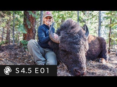I Cried In Walmart! -  S4.5 EP 1 - Brittany's Northern Arizona Bison Hunt