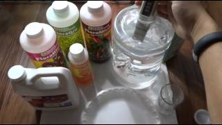 Non-circulating Hydroponics - Kratky Hydroponic - How To for Beginners