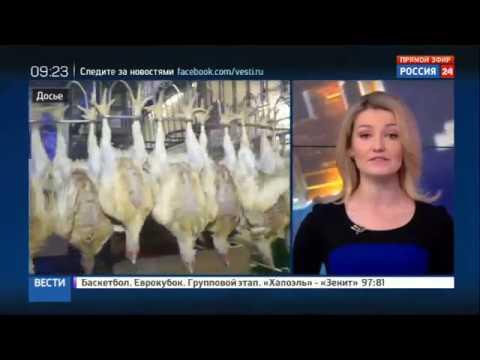 Роскачество исследует куриное мясо