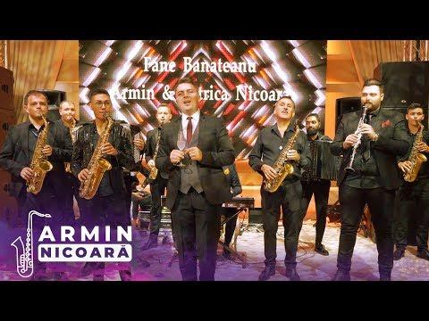 Fane Banateanu cu Armin & Petrica Nicoara - La Multi Ani De Ziua Ta
