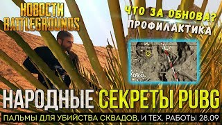 PUBG СЕКРЕТЫ ПАЛЬМ В ПУСТЫНЕ / PLAYERUNKNOWN'S BATTLEGROUNDS