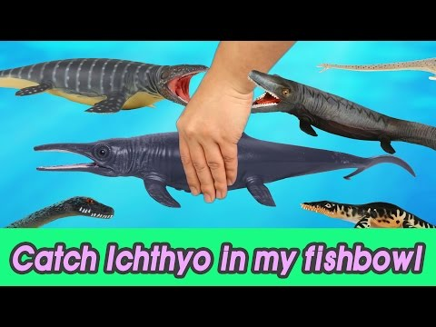 [EN] #47 Let's catch Ichthyosaurus in my fishbowl 2 kids education, Collecta figure [CoCosToy]