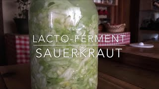 Lacto-Fermented Sauerkraut
